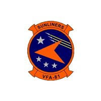 VFA-81 F/A-18E/F Super Hornet Custom Airplane Tail Flash