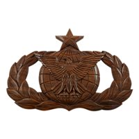 USAF Senior Force Protection Badge Plaque