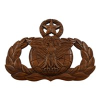USAF Master Force Protection Badge Plaque
