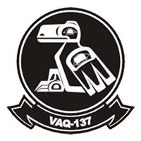 VAQ-137 EA-6B Prowler Custom Airplane Tail Flash