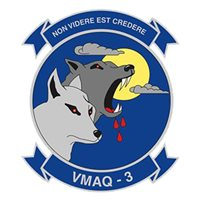 VMAQ-3 EA-6B Prowler Custom Airplane Tail Flash