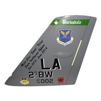 2 BW B-52H Stratofortress Custom Airplane Tail Flash