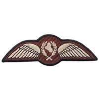 IQAF 9 FS Wing Patch