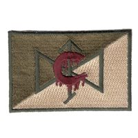 C Troop 4-6 CAV Carnage Patch