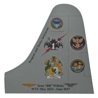VQ-1 P-3 Airplane Tail Flash
