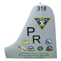 CPRW-10 P-3 Airplane Tail Flash