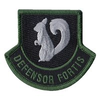 93 AGOW Defensor Fortis Patch