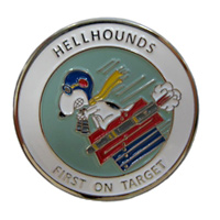 20 RS Squadron Coin