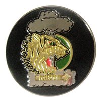 393 BS Challenge Coin