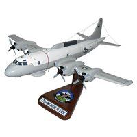 VQ-1 EP-3E Aries Custom Airplane Model