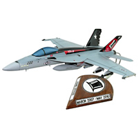 VFA-14 F/A-18E/F Custom Airplane Model