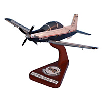 12 FTW T-6A Texan II Custom Airplane Model