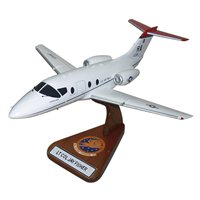 99 FTS T-1A Jayhawk Custom Airplane Model