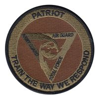 ANG Patriot Exercise OCP Patch