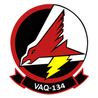 VAQ-134 EA-6B Custom Airplane Model