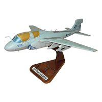 VAQ-142 EA-6B Custom Airplane Model