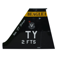 2 FTS T-38 Airplane Tail Flash