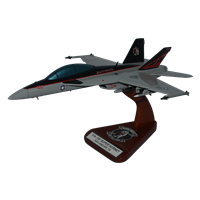 VFA-154 F/A-18E/F Custom Airplane Model