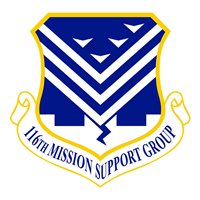 11 MSG Patch