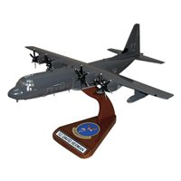 79 RQS HC-130 Custom Airplane Model