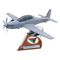 Super Tucano Custom Aircraft Model