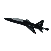 1 FW T-38 Custom Airplane Briefing Stick