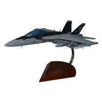 VAQ-141 EA-18G Custom Airplane Model