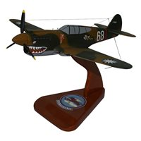 Design Your Own P-40 Custom Airplane Model
