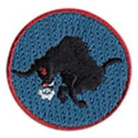 17 RS Small Bull Patch