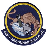 489 RS Squadron Desert Patch
